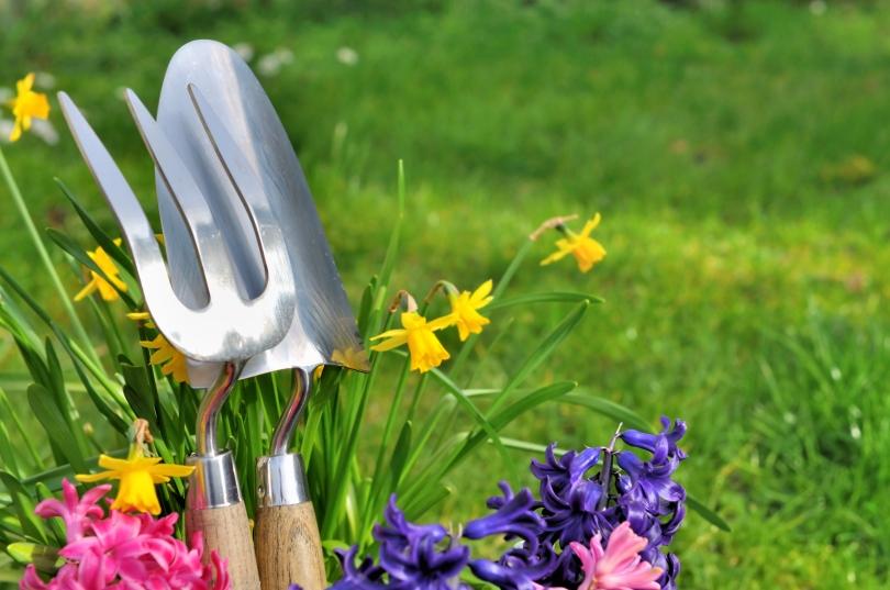 Det är inte bara din trädgård som kan göras vårfin, din annons ska också vårstädas!